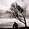 piranha: sihouette of person sitting under bare tree; dark clouds (sad)