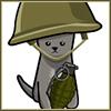 Misc - War Kitten
