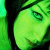 Artemisia: closeup