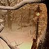 cofax7: Lantern Waste in the snow (Narnia - Lantern)